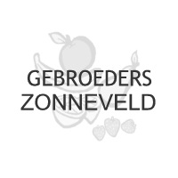 Gebr. Zonneveld Review
